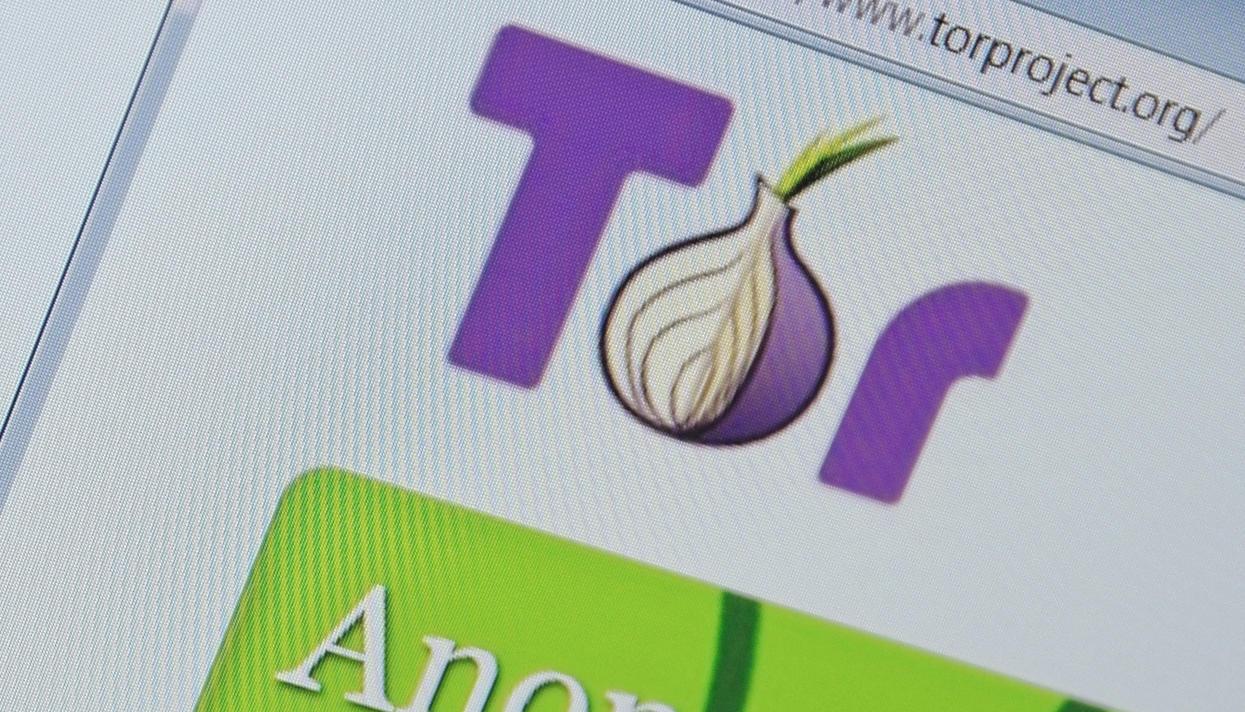 видеоплеер длЯ tor browser hidra